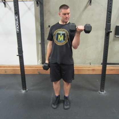 Dumbbell Hammer Curl Exercise 2