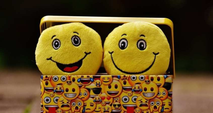 The New Golden Rule Smiley Faces Emojis