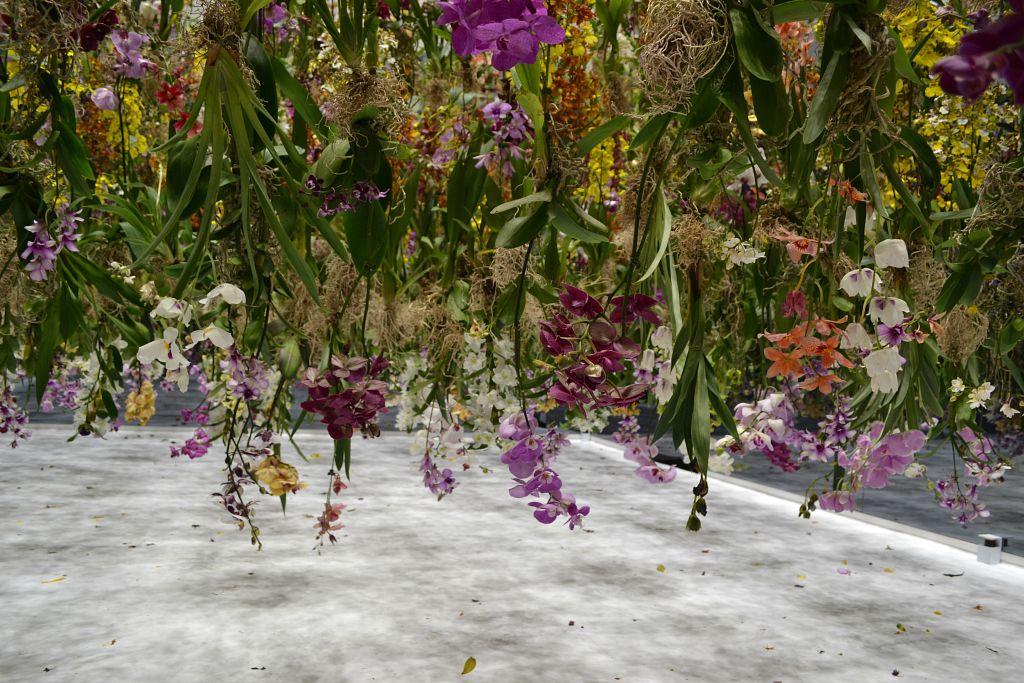 team lab flower installation