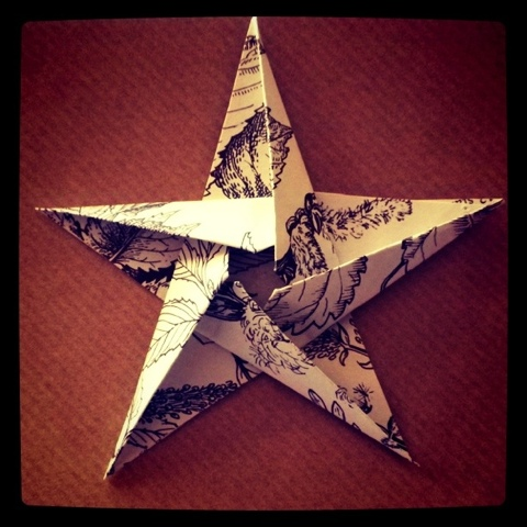 Made Origami Star Christmas Cards Mathilde Heart Manech