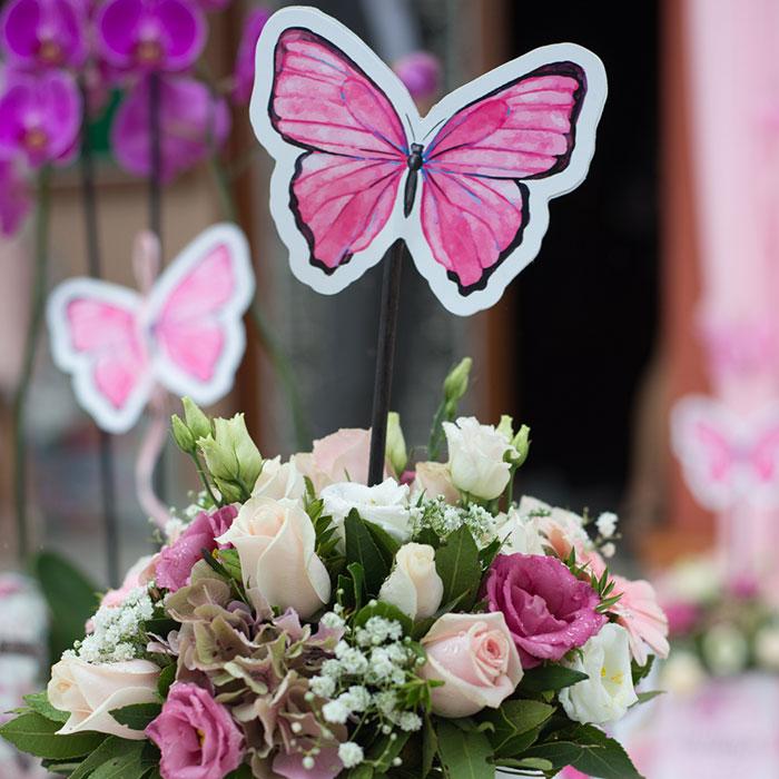 Οργάνωση Βάπτισης Με Θέμα Πεταλούδες