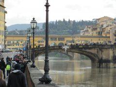 ponte santa trinità catenaria