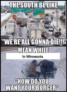 MinnesotaLife