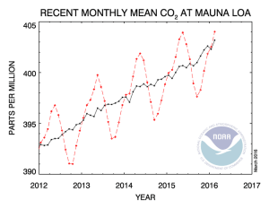 Figure 1: NOAA Plot of the Atmosphere's CO2 Concentration.