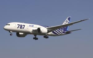 Figure 1: Modern Fuel Efficient 787 Airliner. (Source)