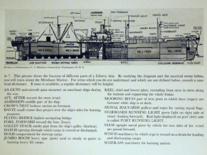 Figure 2: Cross-Section of a Liberty Cargo Ship.