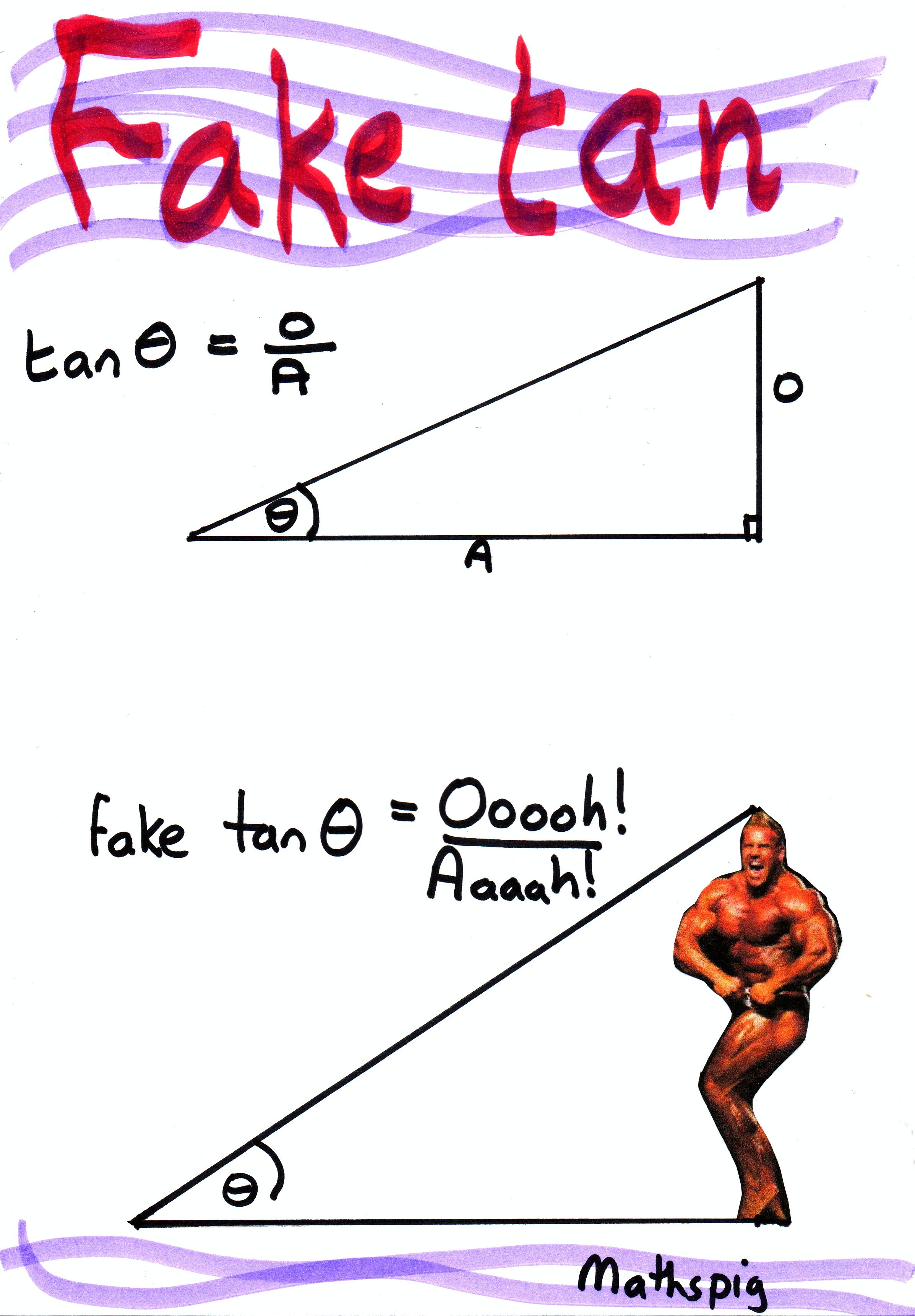 Middle School Math Fun