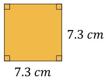 s = 7.3cm