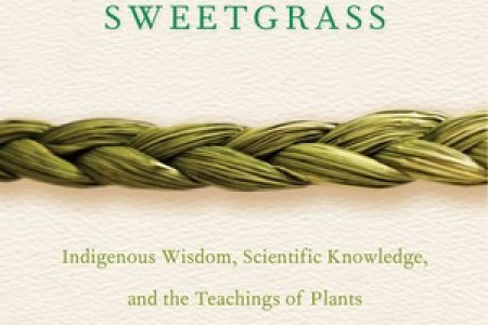 the real world   Matilda Magtree Time has whipped by and my inter library  thank you   Trent Hills   copy of  Braiding Sweetgrass is due back before I ve had the chance to read more  than a