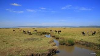 V-matira-safari-bushcamp-activities-balloon-flight-00002