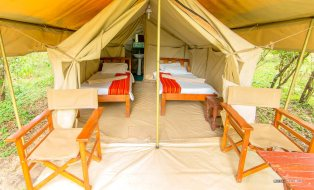 matira-bushcamp-maasai-mara-camp-matira-safari-adventure-camp00005