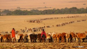 matira-safari-bushcamp-activities-maasai-village-00002