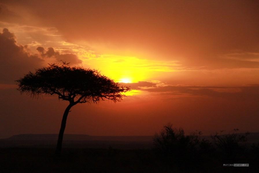 matira-safari-bushcamp-activities-nyama-choma-00003