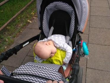 niemowle usypia w zowku anex sport