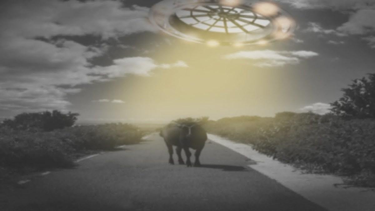 UFO、宇宙人に関する衝撃事実、事件まとめ…UFOアブダクション「パスカグーラ事件」、米軍の緊急声明!謎のUFOオーブ群が出現、米政府のUFO牧場極秘実験とは…