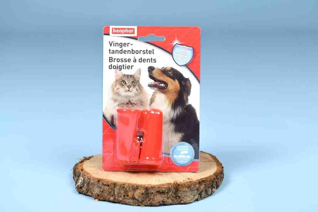 brosse-à-dents-chats-boxchat-matoobox