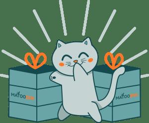 miaou-box-chats)jouets