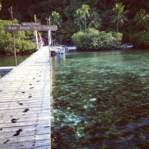 Raja Ampat DIve Lodge