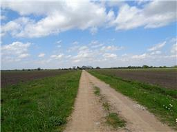 Property for sale at 2438 Highway 36, Rosenberg,  Texas 77471