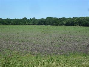 Property for sale at 0 Psencik Road, Richmond,  Texas 77469