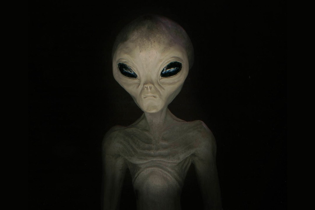 Alleged Greys Alien Race - Race that continues to visit Earth