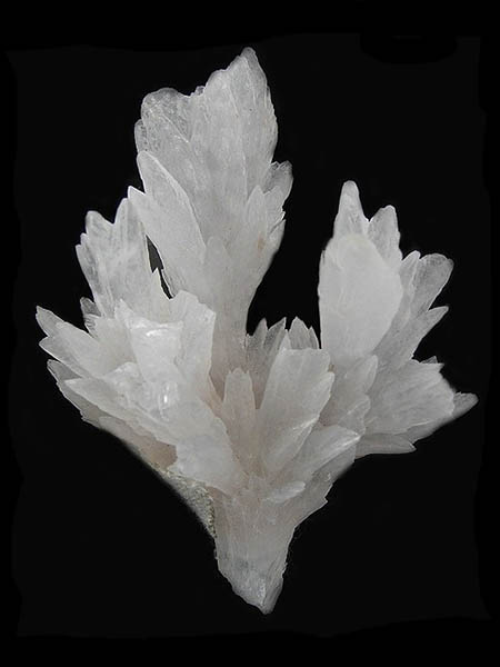 White-Calcite