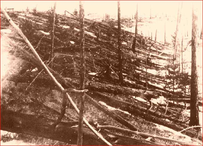 Flattened trees at the site of the Tunguska