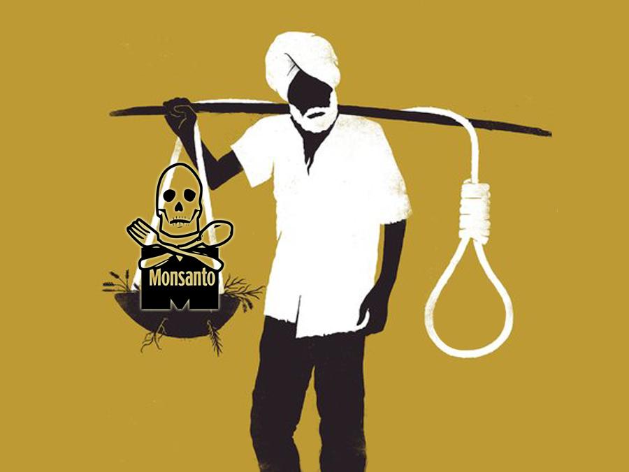 SJEME ZLA: Samoubojstva indijskih seljaka zbog Monsantove pohlepe