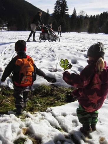 erster Schnee am Spitzingsee