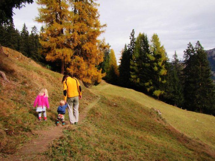 Wanderweg_Klangwald