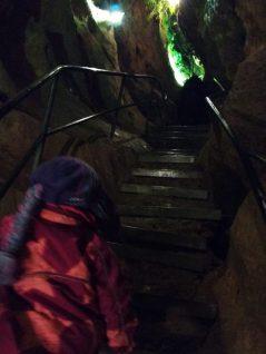 Treppen-in-der-Sturmannshoehle