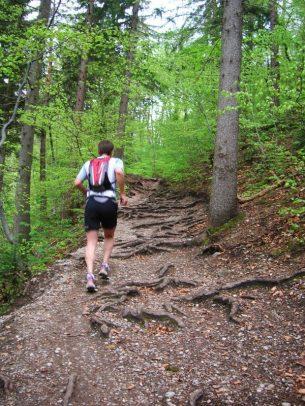 Läufer brauchen Nährstoffe