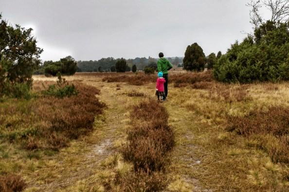 Rundweg durch die Lüneburger Heide