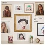 Erato_-_Pictures_of_Pets_artwork72