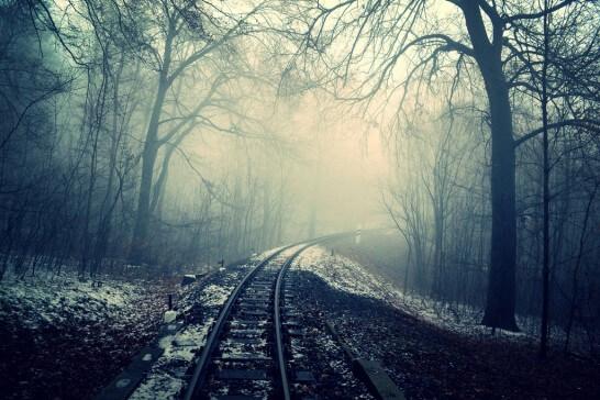 森のなかの鉄道