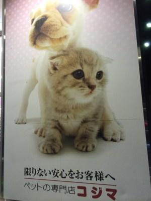 ペット専門店コジマ