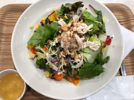 アール・エフ・ワンの30種類の野菜&蒸し鶏サラダ