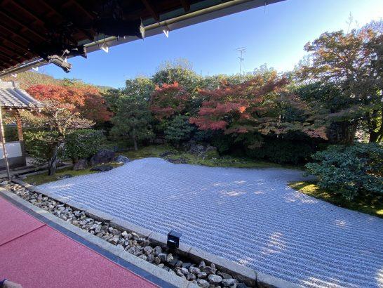 高台寺 圓徳院の庭園
