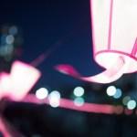 桜まつりの提灯