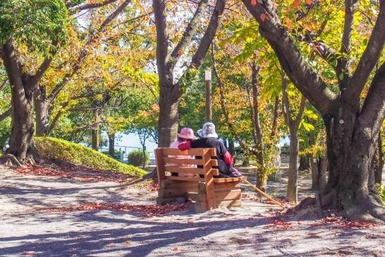 公演のベンチに座る老夫婦