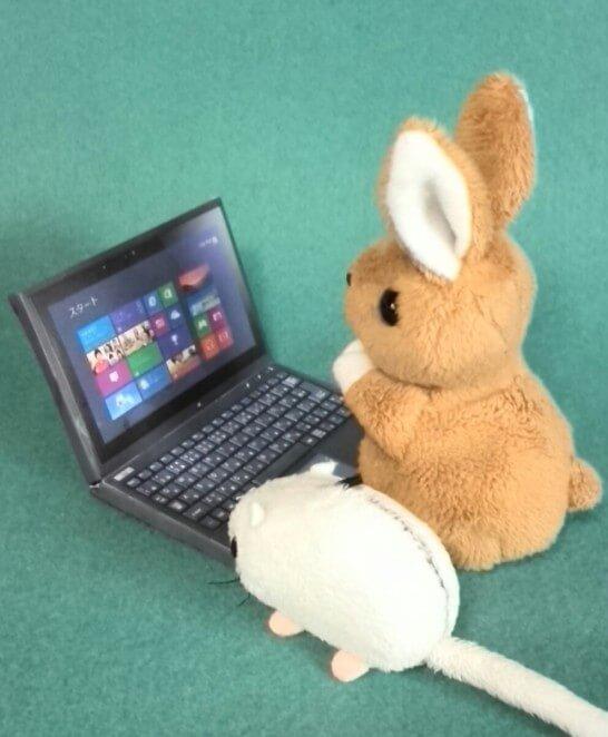 パソコンの前に座る動物のぬいぐるみ