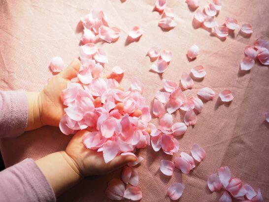 桜の花びらと子供の手