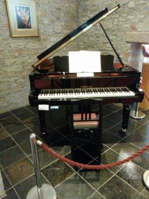 ザ・プリンス 箱根芦ノ湖のピアノ