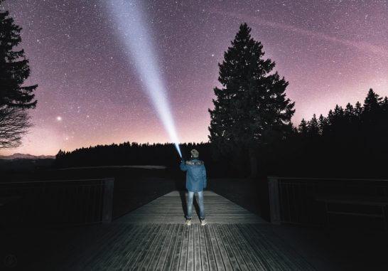 海外の夜の森と星空