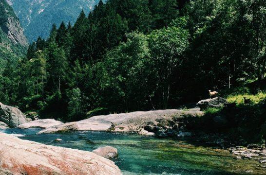 海外リゾートの川