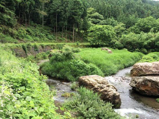 休暇村奥武蔵の周辺の川