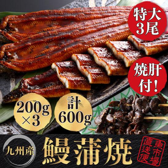 九州産うなぎ蒲焼3尾と焼肝の贅沢セット