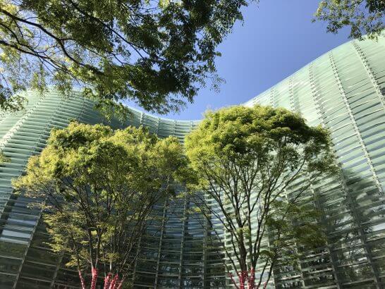 国立新美術館の外観 (2)