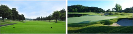東尾理子プロをゲストに招いたゴルフイベントの会場