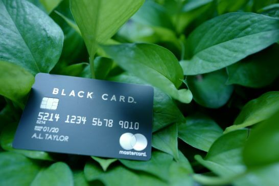 葉っぱの上に置いたラグジュアリーカード(ブラックカード)